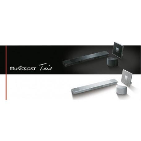 Musiccast TRIO YSP 1600 + WX 30 + ISX 80