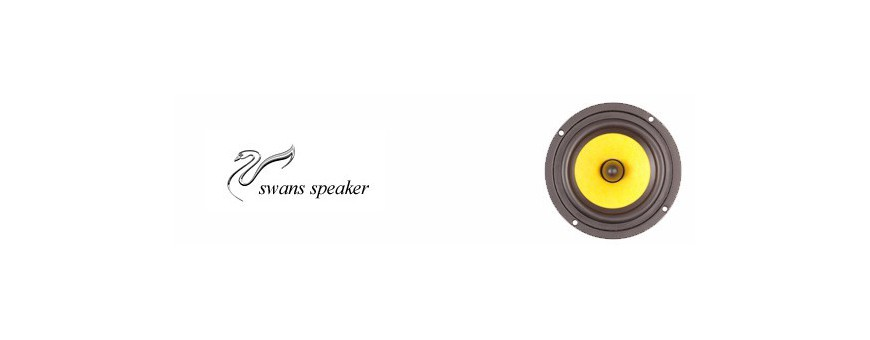 Swans speaker
